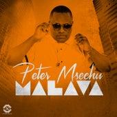 Malava de Various Artists