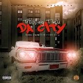 Trapping Thru da City by Stevie Joe