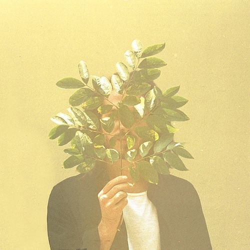 French Kiwi Juice by FKJ