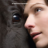 Disappear by My Brightest Diamond