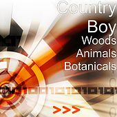 Woods Animals Botanicals by Country Boy