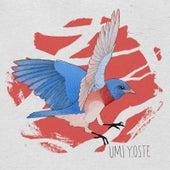 Umi by Yoste