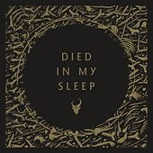 Died in My Sleep von Demon Hunter