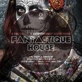 Fantastique House Edition 12 von Various Artists