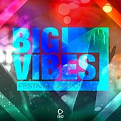 Big Vibes - Festival Session #1 by Various Artists
