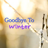 Goodbye To Winter by Various Artists