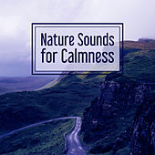 Nature Sounds for Calmness – Music for Relaxation, Soothing Rain, Pure Mind, Deep Sleep, Peaceful Music, Total Relax de Sounds Of Nature