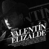 Tributo A Valentín Elizalde de Various Artists