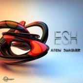 Atom Smasher de Esh