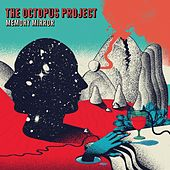 Memory Mirror by The Octopus Project