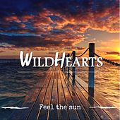 Feel the Sun de The Wildhearts