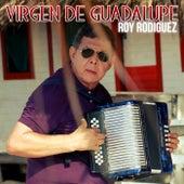 Virgen de Guadalupe by Roy Rodriguez