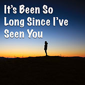 It's Been So Long Since I've Seen You by Various Artists