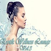 Erotik Wellness Lounge, Vol. 3 (Tantra Chill Out and Kamasutra Ambient) by Various Artists