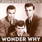 Wonder Why by Dion