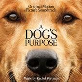 A Dog's Purpose (Original Motion Picture Soundtrack) di Rachel Portman