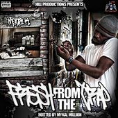 Fresh from the Trap by Mental K
