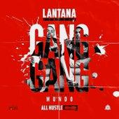 Gang Gang by Lantana