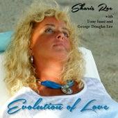Evolution of Love de Various Artists