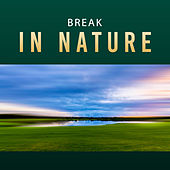 Break in Nature – Relaxing Music, Full of Calming Nature Sounds, Relax After Work de Nature Sound Collection