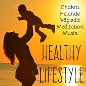 Healthy Lifestyle - Chakra Helande Vägledd Meditation Musik för Lugn Zen Spa Lucida Drömmar Energicentrum by Sounds of Nature White Noise for Mindfulness Meditation and Relaxation BLOCKED