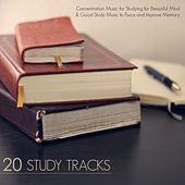 20 Study Tracks - Concentration Music for Studying for Beautiful Mind & Good Study Music to Focus and Improve Memory by Concentration Music Ensemble