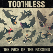 The Pace Of The Passing by Toothless
