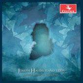 Haydn: Piano Trios, Vol. 8 by Mendelssohn Piano Trio