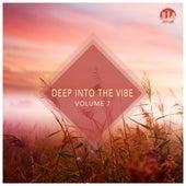 Deep Into the Vibe, Vol. 7 de Various Artists