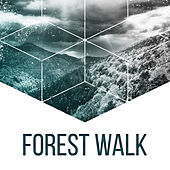 Forest Walk – Nature Sounds for Relaxation, Soothing Water, Singing Birds, Peaceful Mind, Deep Relief de Nature Sounds Artists