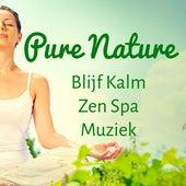 Pure Nature - Blijf Kalm Zen Spa Muziek voor Concentratie Verbeteren Geleide Meditatie en Spirituele Training by Radio Meditation Music