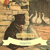 Wallflower by Odetta