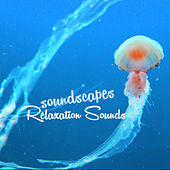 Soundscapes Relaxation Sounds by Soundscapes Relaxation Music