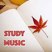 Deep Concentration Study Music by Concentration Music Ensemble