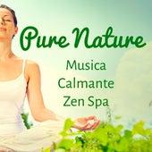 Pure Nature - Musica Calmante Zen Spa per Migliorare la Concentrazione Meditazione Guidata Esercizi Spirituali by Radio Meditation Music