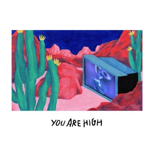 You're High de Agar Agar