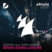 Never Gonna Love Me by Dzeko
