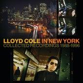 Man On The Verge de Lloyd Cole