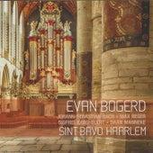 Sint Bavo Haarlem by Evan Bogerd