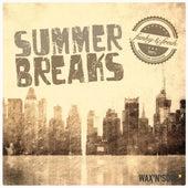 Summer Breaks by Various Artists