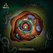 Primordial by Various Artists