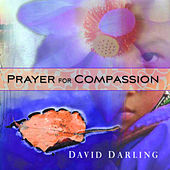 Prayer For Compassion de David Darling