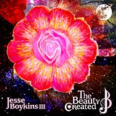 The Beauty Created de Jesse Boykins III