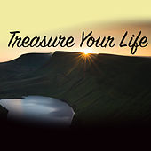 Treasure Your Life by Various Artists