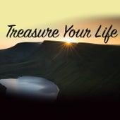 Treasure Your Life von Various Artists