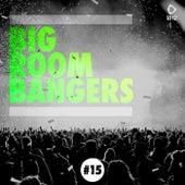 Big Room Bangers, Vol. 15 by Various Artists