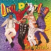 Temporal (Audio) de Various Artists