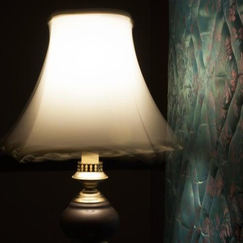 Lamp Shade by Megan Nash