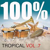 100% Tropical Vol. 7 by Various Artists