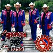 Corridos Prohibidos by Los Broncos De Cosala